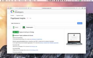 Google PageSpeed 100%