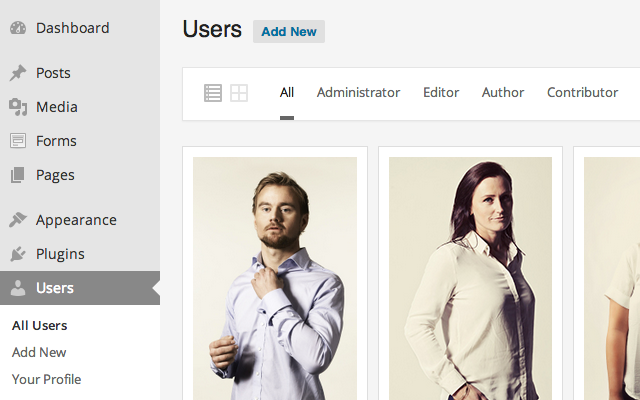 A closer look at the grid view of the users section in the WordPress admin panel