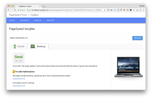 Google Pagespeed score for WordPress with default theme