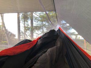 Inside the hammock